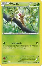 4 x Weedle (XY 3/146) - Common