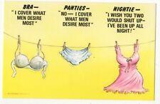 Bra Panties Nightie On Washing Line Bamforth Comic Postcard 869b