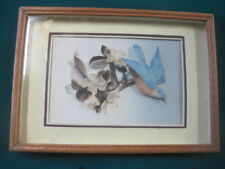 """VTG 3D Shadow Box Real Feather Art Picture Frame Blue Bird Life Like 10 5/8 x 7"""""""