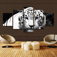 HD Canvas Print home decor wall art painting White tiger 5pc Unframed