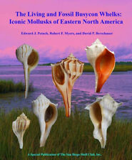 The Living and Fossil Busycon Whelks: Eastern North America- Petuch Hardcover!!