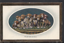 Animals Postcard - Dogs - Group of Puppies - Please Take Us Down RS2318