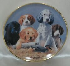 Collectors Plate Franklin Mint School Daze Dogs  Duck Limited Edition