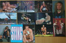 WCW NWO Superstars Karten Trading Cards im Postkartenformat 1998 WWF WWE Panini