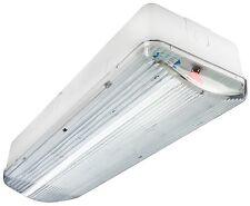 Cloison LED d'urgence maintenu 3 heures de feu sortie SIGNE plafond ou montage mural