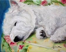 Mary Sparrow Sleeping Westie west highland terrier PRINT dog portrait