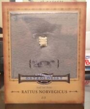 2014 Allen Ginter REAL 1/1 Amateur Osteologist  RAT BONE! Look At the Pictures!