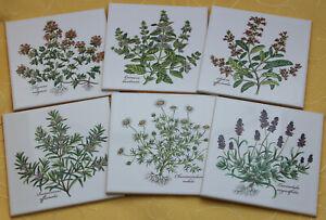 Dekorfliese 15x15, Küchenfliese, Kräuter, Lavendel, Kamille, Thymian, Rosmarin