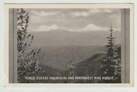 Unused Postcard Real Photo Three Sisters Mountains and Northwest Pine Forest OR