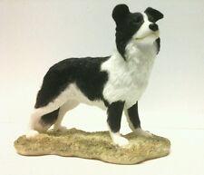 Sherratt simpson border collie standing r