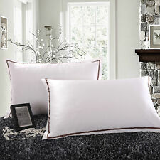 100% Pure Mulberry Silk On Both Sides 22 Momme Silk Charmeuse Pillow Case Ivory