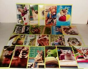 AVANTI Greeting Cards Lot/31 Assorted Designs & Occasions