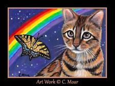 Bengal Cat Monarch Butterfly Stars Rainbow ACEO Limited Edition Art Print
