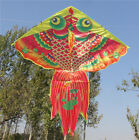 Outdoor Fun Golden Fish Shark Sport Kite without handle Line high quality kite