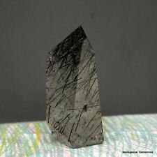 "3.08"" Black Tourmaline Included Quartz Crystal Shcorl Tourmalated Point, Tmq33"