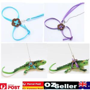 Reptile Harness Adjustable Strap Leash Gecko Lizard Bearded Dragon Multi-Color