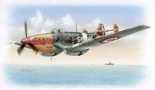 Special Hobby kit 1/48 Loire Nieuport LN40/401 French Navy Dive Bomber - Used