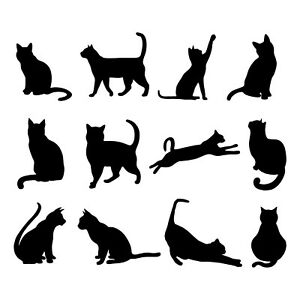 CATS KITTEN VARIOUS VINYL STICKERS FOR WINE GLASS X 12