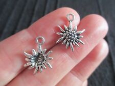 Pack of 20 Tibetan Silver Tone Daisy Flower Edelweiss Charms 17mm x 13mm