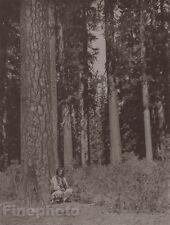c.1900/72 Photogravure NATIVE AMERICAN INDIAN Klamath Forest EDWARD CURTIS 11x14