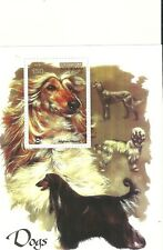 Mint Condition 2003 Afghanistan / Afghan Hound Mini Sheet