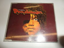 Cd  P.M. Dawn  – Reality Used To Be A Friend Of Mine