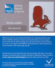 RSPB Pin Badge | Red Squirrel | GNaH backing card [00938]