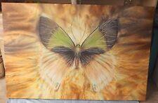 Original Monarch Butterfly Large 54 x 36 Gallery Wrapped Canvas Helen Jensen
