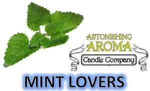 MINT LOVERS COLLECTION Soy Wax Clamshell Break Away tart melt  candle