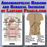Abdominopelvic regions and Surgical Incision Names     |    Lanyard Card