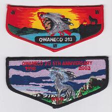 Owaneco Lodge 313 Earned LLD Training Patch