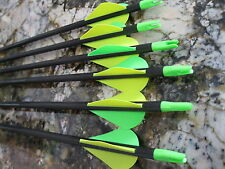 CARBON STORM XP  Arrows  400    50/65   1/2 dozen    417206/TF