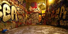 Graffiti World 20'x10' CP Backdrop Computer-painted Scenic Background DT-SL-048