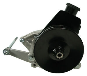 NEW POWER STEERING PUMP,TANK,BRACKETS,DOUBLE PULLEY FOR A/C,JEEP CJ V8,304-401