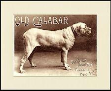 ENGLISH MASTIFF DOG COMPACT MIRROR LADIES HANDBAG SANDRA COEN ARTIST PRINT