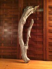 "Beautiful 36"" DRIFTWOOD Art Piece Terrarium Taxidermy Aquarium Beach Wood DECOR"