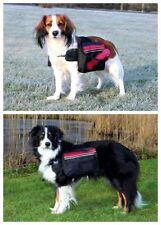 Vêtements et chaussures noires pour chiens moyens