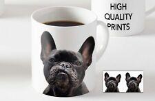 French Bulldog Dog Ceramic MUG