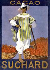 SUCHARD-cacao-brasilero-noce-marca favorita-Svizzera-Pubblicità Vintage 1916
