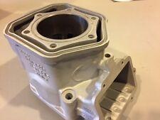 2008-11 Ski Doo 600cc MXZ X RS Replated Cylinder Cast # 623480 $100 Core refund!