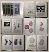 Meyer Lehrbuch der Strahlentherapie 1929 4 Bde. v.5 Gynäkologie Chirurgie xz