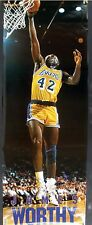 RARE JAMES WORTHY LAKERS 1990 VINTAGE ORIGINAL DOOR SIZE NBA COSTACOS POSTER