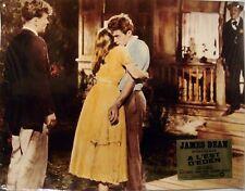 Photo Prestige Cinéma 30x39cm A L'EST D'EDEN (EAST OF EDEN) James Dean TBE b