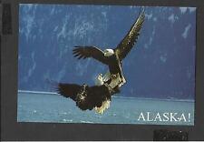 Colour Postcard Eagles lock Talons in Flight to Mate unposted Alaska