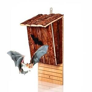 Fledermauskasten Fledermaushöhle Natur Fledermaus Hotel Schlafplatz