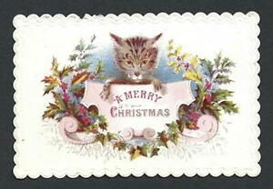 Y38 - CAT HOLDING SIGN - 1869 - VICTORIAN XMAS CARD WITH EMBOSSED EDGES