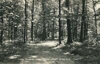ENSIGN MI – Trail to Indian Lake Parkers Resort Real Photo Postcard rppc - 1938