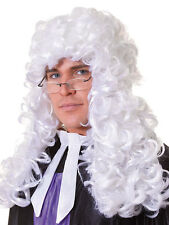 Unisex High Court Judge Barrister Lawyer Period Drama Wig Fancy Dress Accessory