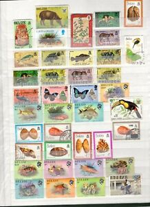 Belize Collection