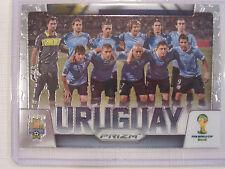 2014 Panini Prizm FIFA  World Cup Soccer  Team Uruguay Card 31